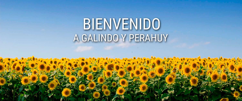 Buenvenido a la web de Galindo y Perahuy
